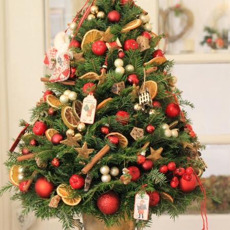 Brad Royal Christmas Tree