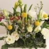 Aranjament de flori mini grădina de primavară