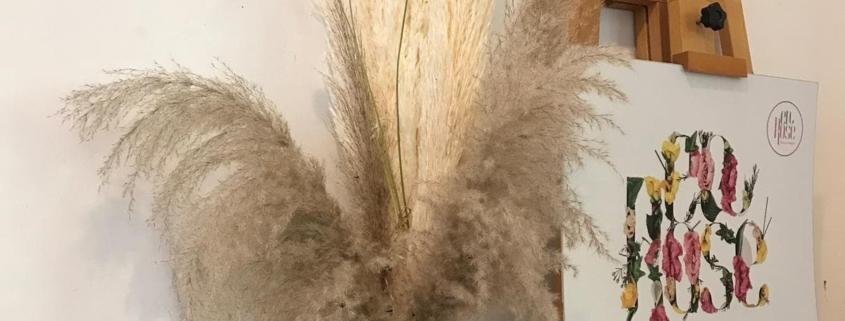 iarba de pampas design