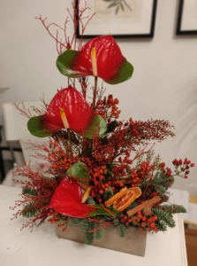 Decor de Craciun cu anthurium