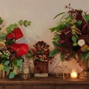 Florile-lunii-decembrie-si-decorul-de-Craciun