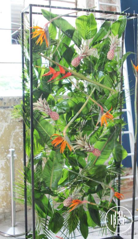 photo corner exotic True Colors