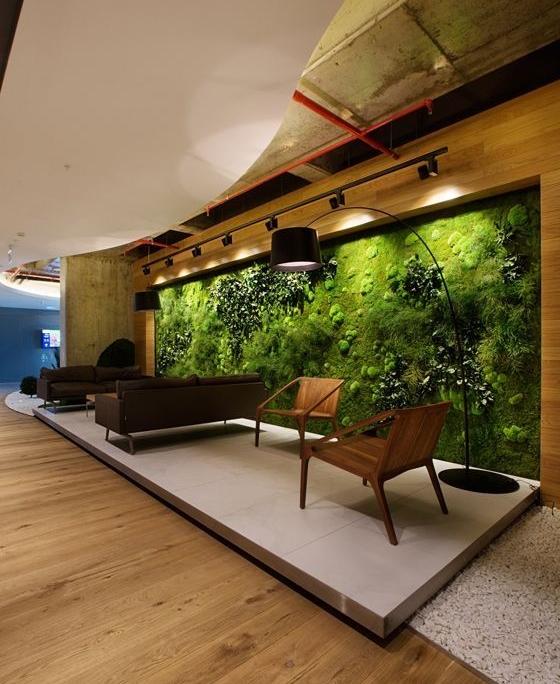 perete muschi verde stabilizat