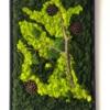 Set de 3 tablouri cu mușchi de pădure stabilizat