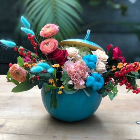 Dovleac turcoaz cu flori Tino Buratino