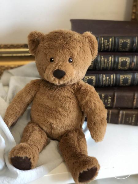 ursuleț de pluș Teddy Bear